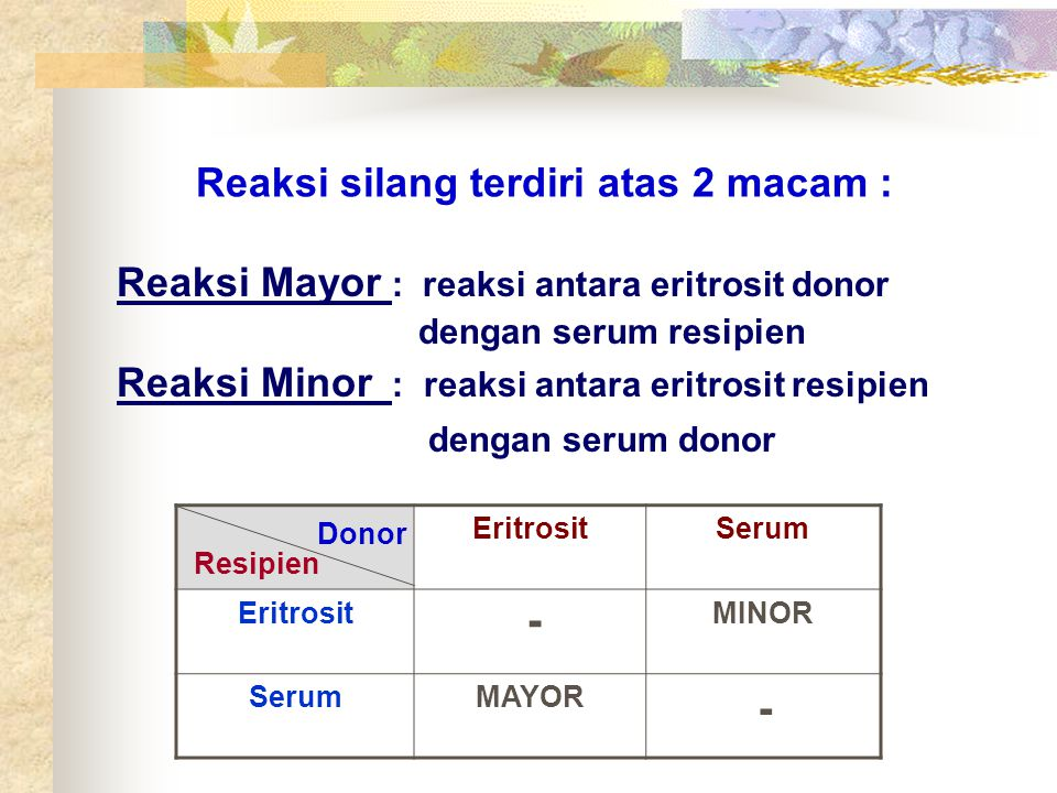 Reaksi Mayor : reaksi antara eritrosit donor dengan serum resipien Reaksi Minor : reaksi antara eritrosit resipien dengan serum donor Reaksi silang te