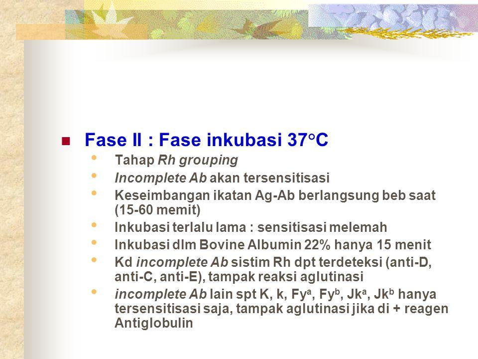 Fase II : Fase inkubasi 37°C Tahap Rh grouping Incomplete Ab akan tersensitisasi Keseimbangan ikatan Ag-Ab berlangsung beb saat (15-60 memit) Inkubasi
