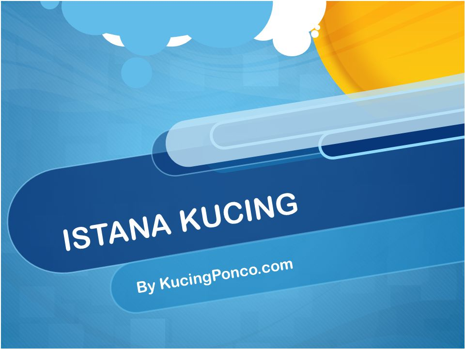 ISTANA KUCING By KucingPonco.com