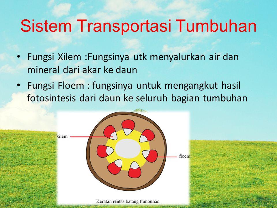 Sistem Transportasi Tumbuhan Fungsi Xilem :Fungsinya utk menyalurkan air dan mineral dari akar ke daun Fungsi Floem : fungsinya untuk mengangkut hasil fotosintesis dari daun ke seluruh bagian tumbuhan