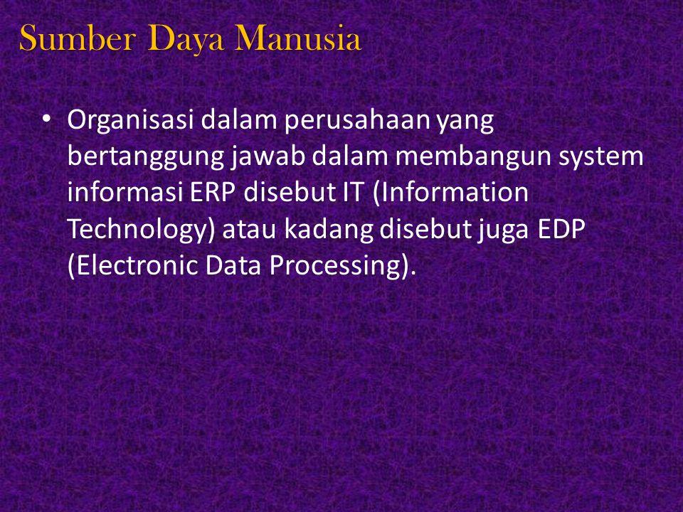 Sumber Daya Manusia Organisasi dalam perusahaan yang bertanggung jawab dalam membangun system informasi ERP disebut IT (Information Technology) atau kadang disebut juga EDP (Electronic Data Processing).