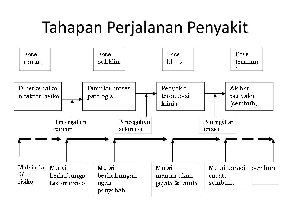 MODEL LINGKARAN  Sebagai pendekatan lain untuk menggambarkan hubu- ngan dengan lingkungan.