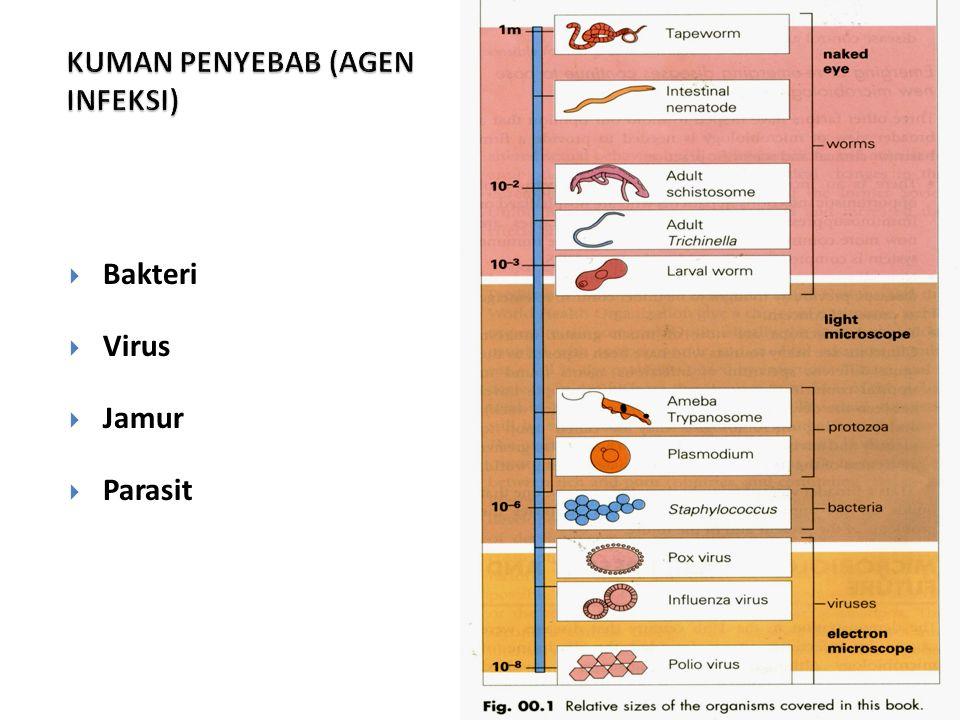 12  Bakteri  Virus  Jamur  Parasit