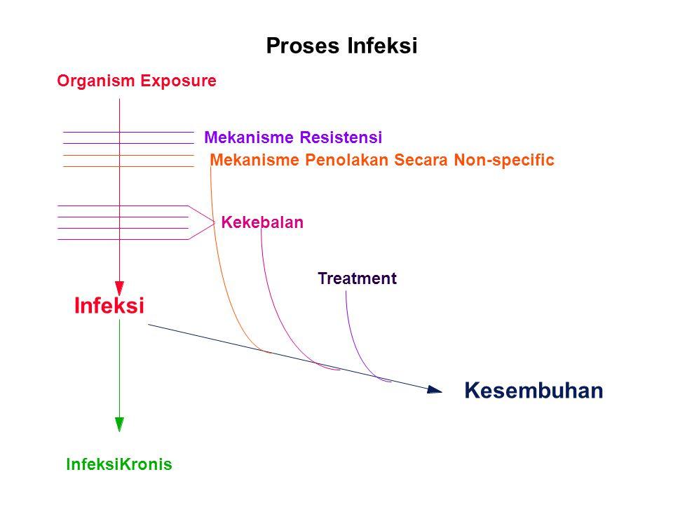 Proses Infeksi Organism Exposure Mekanisme Resistensi Kekebalan Infeksi InfeksiKronis Mekanisme Penolakan Secara Non-specific Treatment Kesembuhan