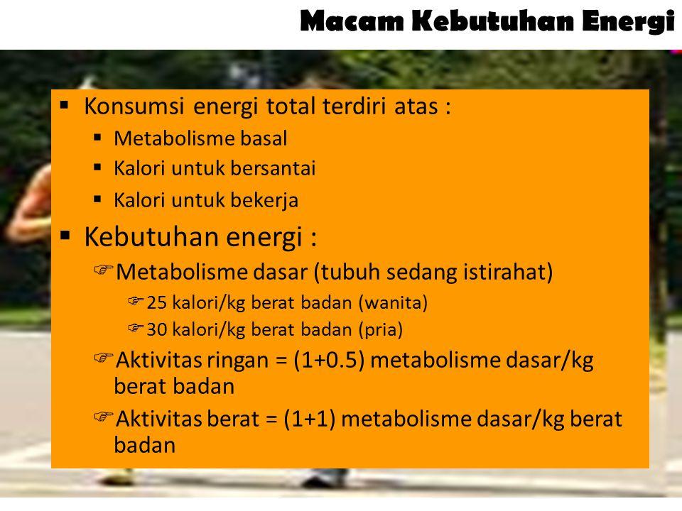 10 Macam Kebutuhan Energi  Konsumsi energi total terdiri atas :  Metabolisme basal  Kalori untuk bersantai  Kalori untuk bekerja  Kebutuhan energ