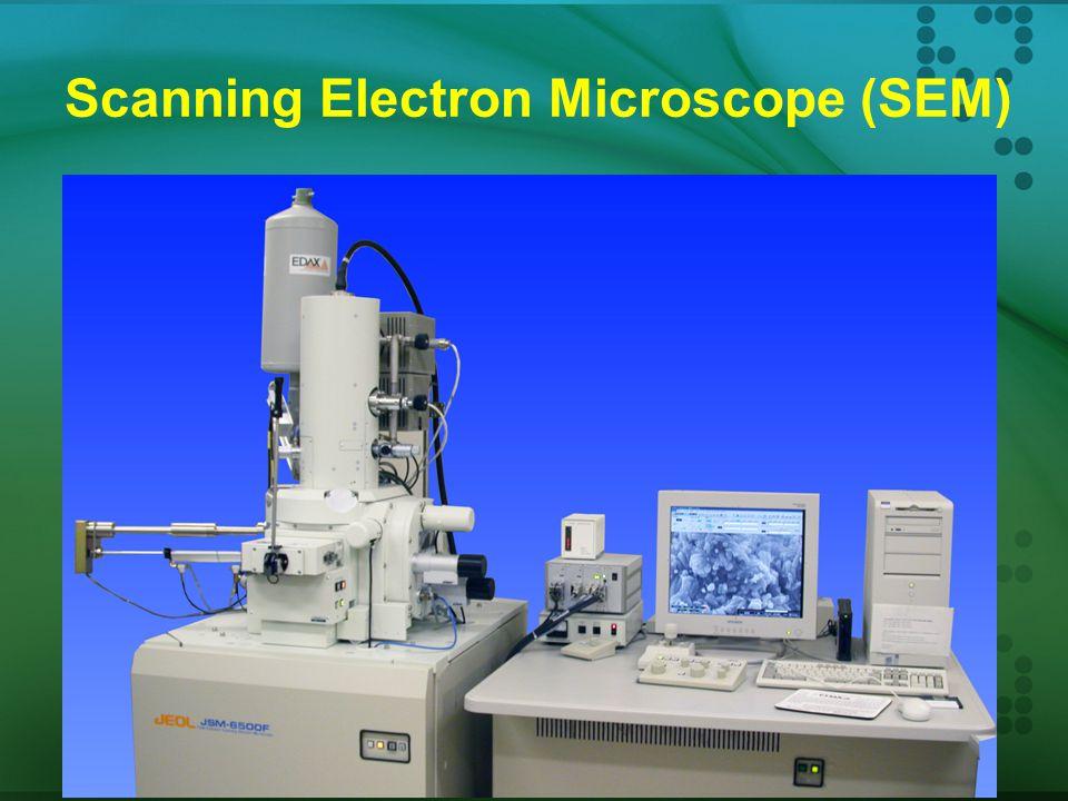 Elektron melewati sampel Difokuskan oleh lensa magnetik Gambar terbentuk pada layar fluorescens - Sama dengan layar TV - Gambar kemudian difoto Maksim