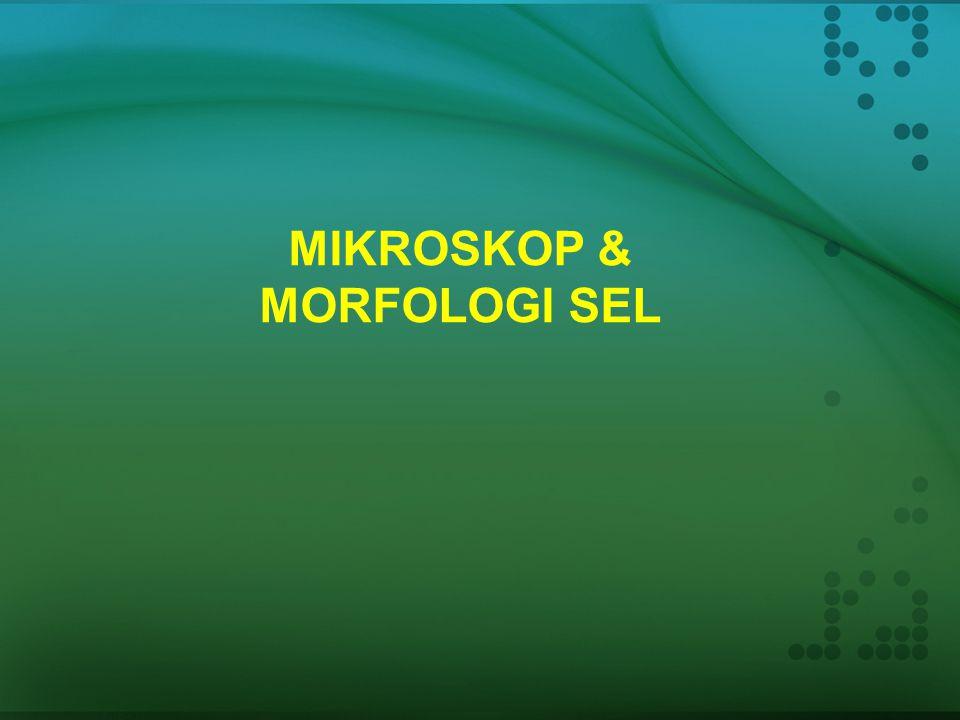 Struktur dan Fungsi Sel Bakteri dan Archeae Pertemuan ke-23 Mikrobiologi Pertanian (AET 209)