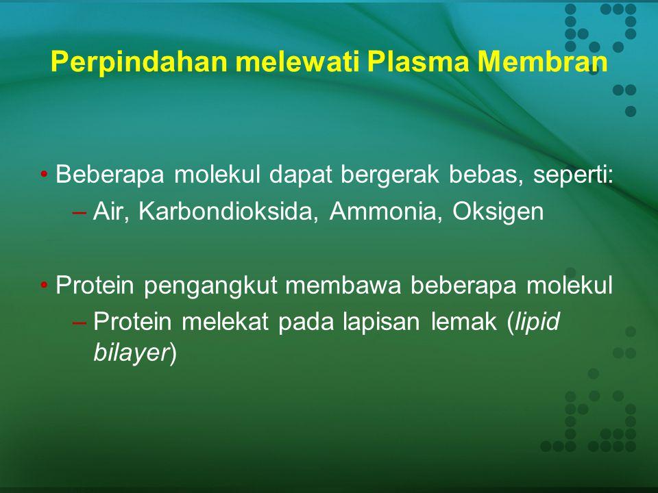 Membran Sitoplasma Struktur: Lapisan phospholipid dgn protein yang berfungsi sebagai penghubung, penanda (marker), and penerima - juga mengandung kole