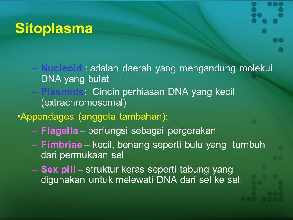 Sitoplasma  Struktur: Cairan menyerupai gelatin yang terhampar di dalam membran sel  Fungsi: - mengandung garam, mineral, dan molekul organik - Meng