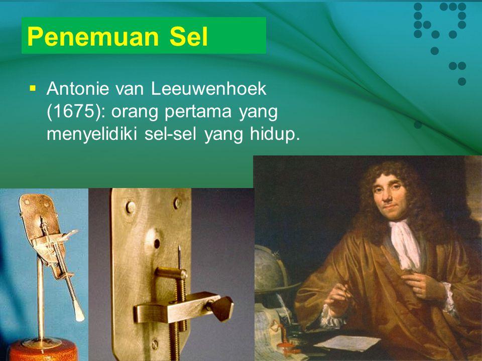 Penemuan Sel  Penemuan lensa  Robert Hooke (1665): menyelidiki satu lapis kecil gabus (sel kulit tanaman yang sudah mati) dengan menggunakan mikrosk