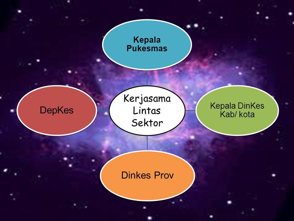 Kerjasama Lintas Sektor Kepala Pukesmas Kepala DinKes Kab/ kota Dinkes ProvDepKes