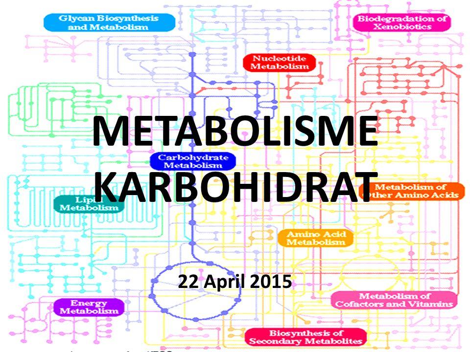 METABOLISME KARBOHIDRAT 22 April 2015