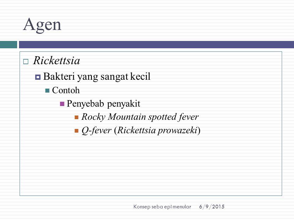 6/9/2015Konsep seba epi menular Agen  Rickettsia  Bakteri yang sangat kecil Contoh Penyebab penyakit Rocky Mountain spotted fever Q-fever (Rickettsi