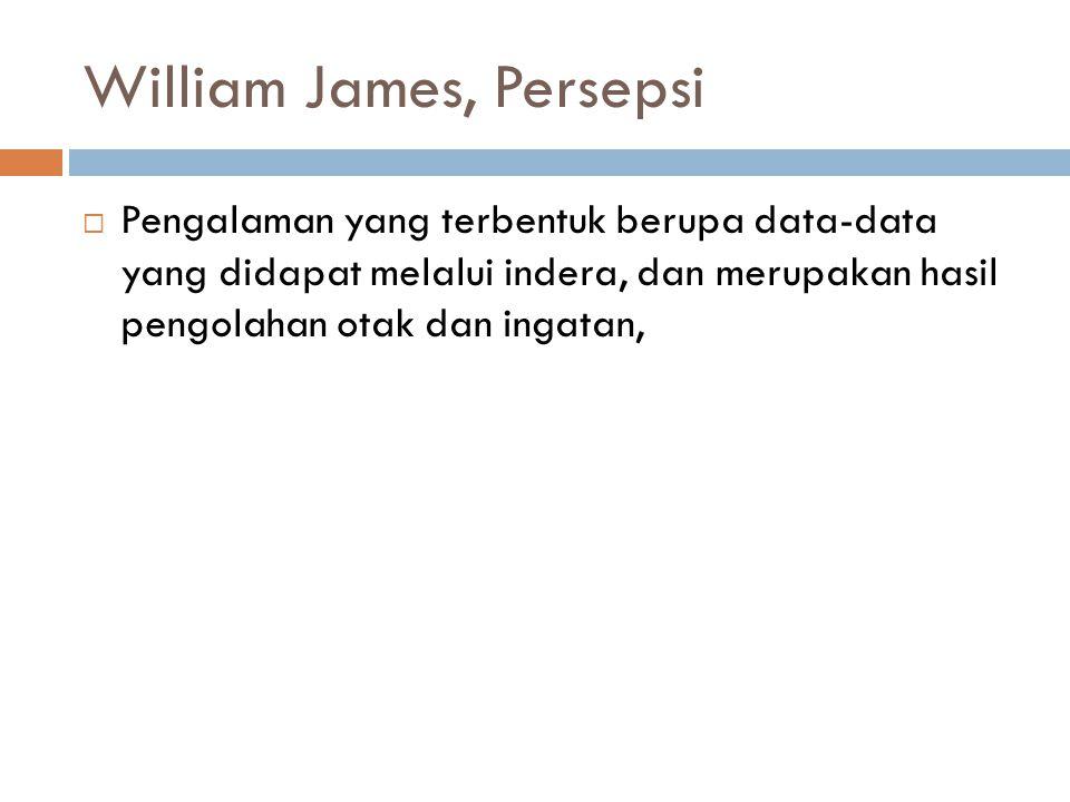 William James, Persepsi  Pengalaman yang terbentuk berupa data-data yang didapat melalui indera, dan merupakan hasil pengolahan otak dan ingatan,