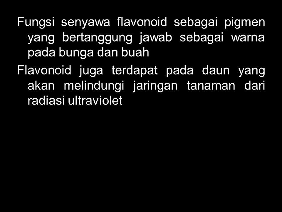 Fungsi senyawa flavonoid sebagai pigmen yang bertanggung jawab sebagai warna pada bunga dan buah Flavonoid juga terdapat pada daun yang akan melindung