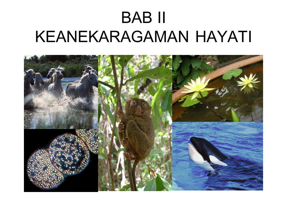 BAB II KEANEKARAGAMAN HAYATI