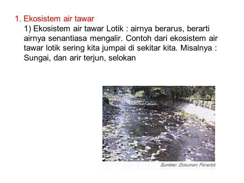 1. Ekosistem air tawar 1) Ekosistem air tawar Lotik : airnya berarus, berarti airnya senantiasa mengalir. Contoh dari ekosistem air tawar lotik sering