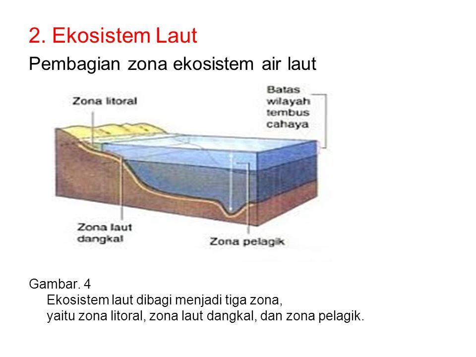 2. Ekosistem Laut Pembagian zona ekosistem air laut Gambar. 4 Ekosistem laut dibagi menjadi tiga zona, yaitu zona litoral, zona laut dangkal, dan zona