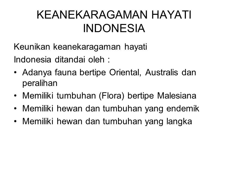 KEANEKARAGAMAN HAYATI INDONESIA Keunikan keanekaragaman hayati Indonesia ditandai oleh : Adanya fauna bertipe Oriental, Australis dan peralihan Memili