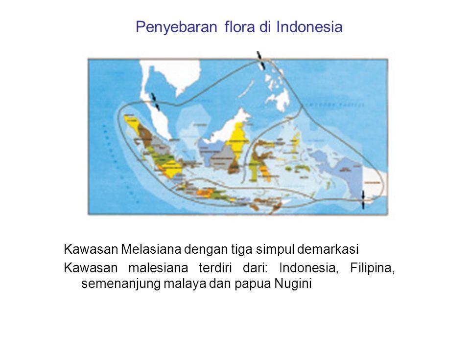 Penyebaran flora di Indonesia Kawasan Melasiana dengan tiga simpul demarkasi Kawasan malesiana terdiri dari: Indonesia, Filipina, semenanjung malaya d