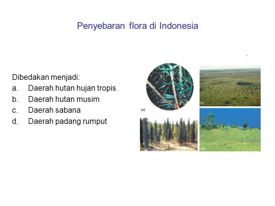 Penyebaran flora di Indonesia Dibedakan menjadi: a.Daerah hutan hujan tropis b.Daerah hutan musim c.Daerah sabana d.Daerah padang rumput
