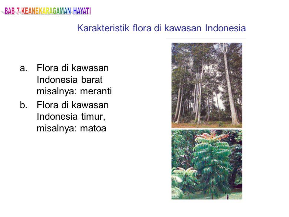 Karakteristik flora di kawasan Indonesia a.Flora di kawasan Indonesia barat misalnya: meranti b.Flora di kawasan Indonesia timur, misalnya: matoa