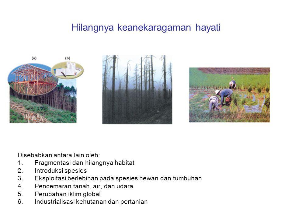 Hilangnya keanekaragaman hayati Disebabkan antara lain oleh: 1.Fragmentasi dan hilangnya habitat 2.Introduksi spesies 3.Eksploitasi berlebihan pada sp