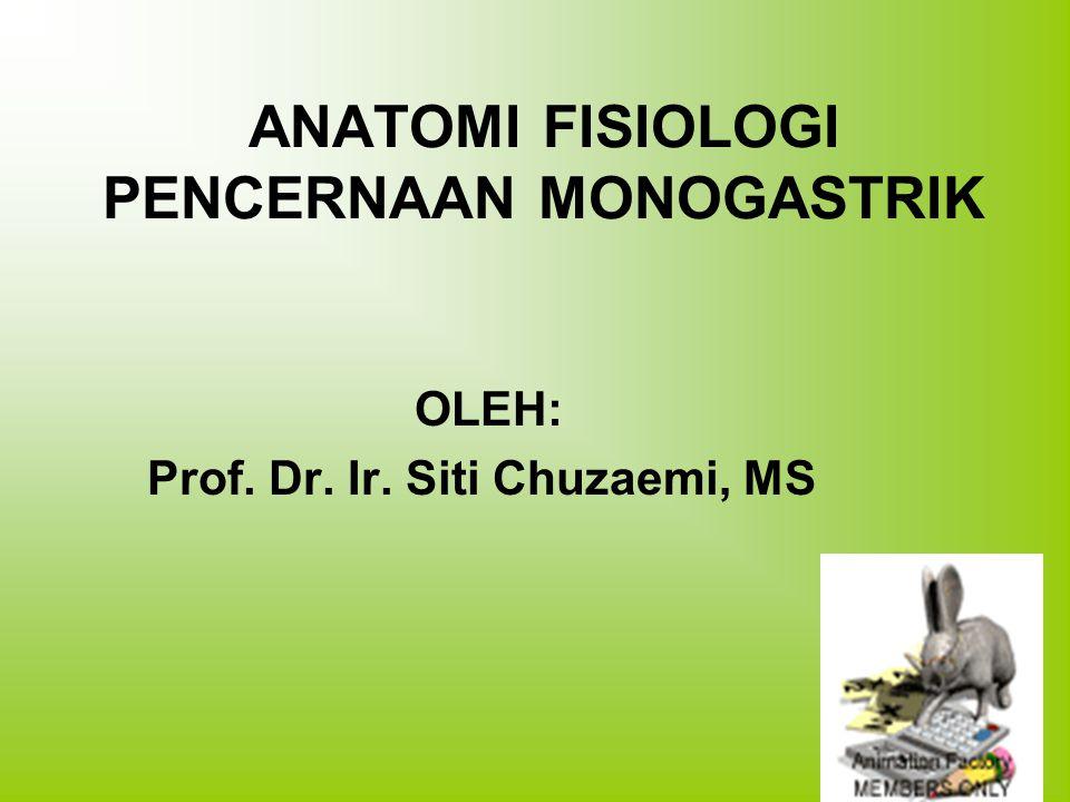 ANATOMI FISIOLOGI PENCERNAAN MONOGASTRIK OLEH: Prof. Dr. Ir. Siti Chuzaemi, MS