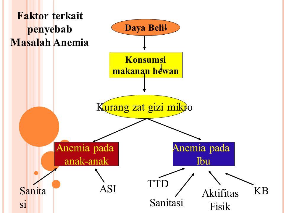 Daya Beli Konsumsi makanan hewan Kurang zat gizi mikro Anemia pada anak-anak Anemia pada Ibu Sanita si ASI Aktifitas Fisik Sanitasi TTD KB Faktor terk