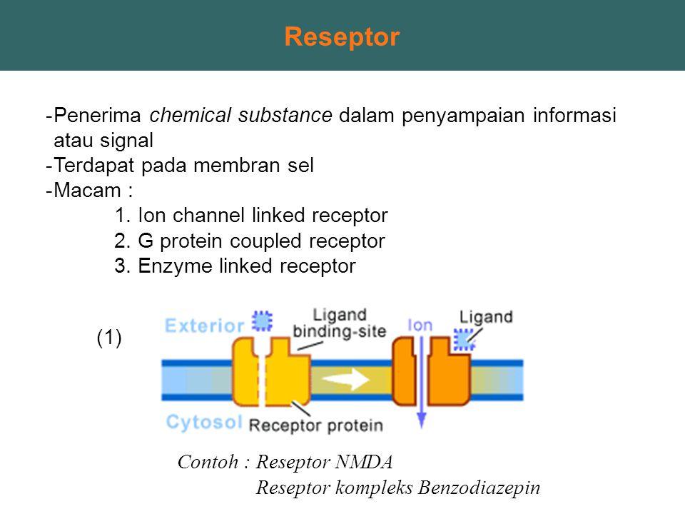 Reseptor -Penerima chemical substance dalam penyampaian informasi atau signal -Terdapat pada membran sel -Macam : 1. Ion channel linked receptor 2. G