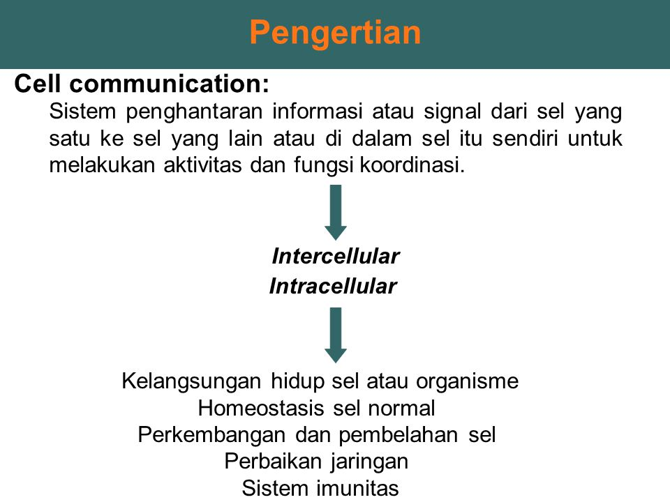 Pengertian Cell communication: Sistem penghantaran informasi atau signal dari sel yang satu ke sel yang lain atau di dalam sel itu sendiri untuk melak