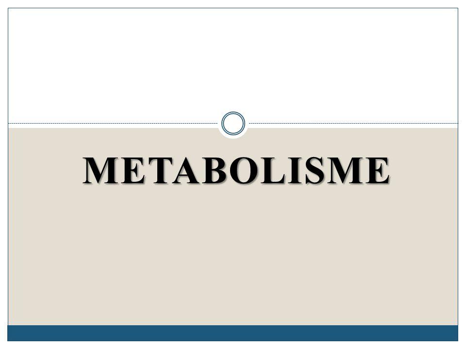 Salah satu ciri makhluk hidup adalah melakukan metabolisme Metabolisme adalah : Total dari semua reaksi kimia yang terjadi di dalam sel.