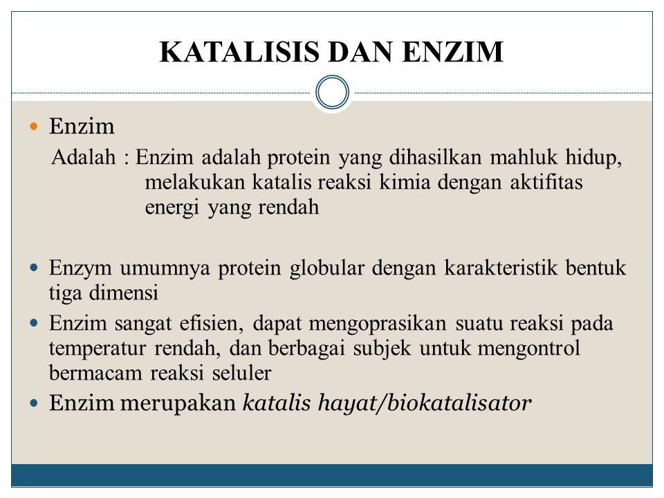 KATALISIS DAN ENZIM Enzim Adalah : Enzim adalah protein yang dihasilkan mahluk hidup, melakukan katalis reaksi kimia dengan aktifitas energi yang rend