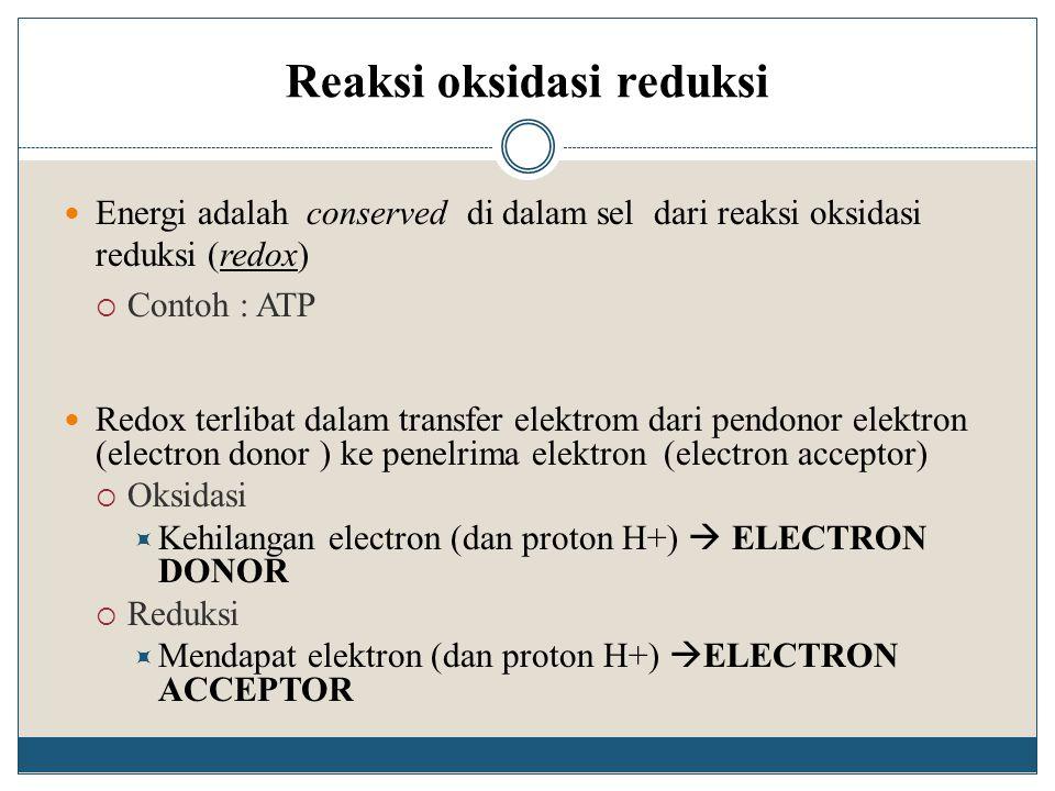 Reaksi oksidasi reduksi Energi adalah conserved di dalam sel dari reaksi oksidasi reduksi (redox)  Contoh : ATP Redox terlibat dalam transfer elektro