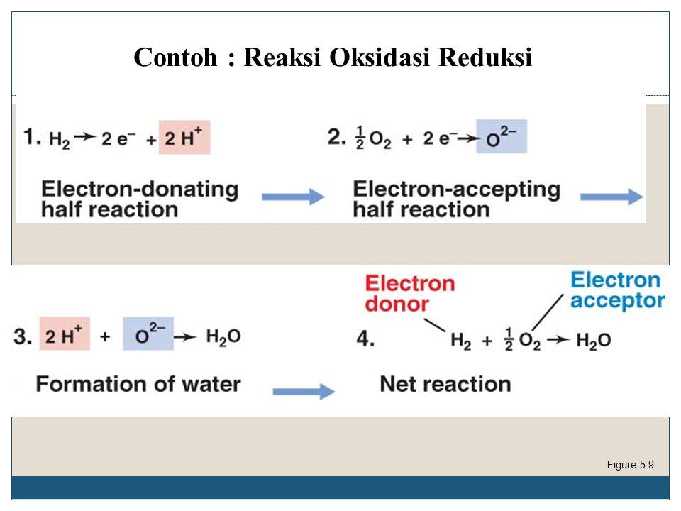 Contoh : Reaksi Oksidasi Reduksi Figure 5.9