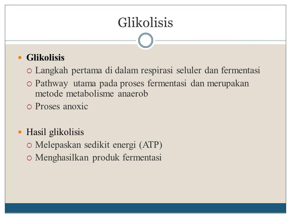 Glikolisis  Langkah pertama di dalam respirasi seluler dan fermentasi  Pathway utama pada proses fermentasi dan merupakan metode metabolisme anaerob