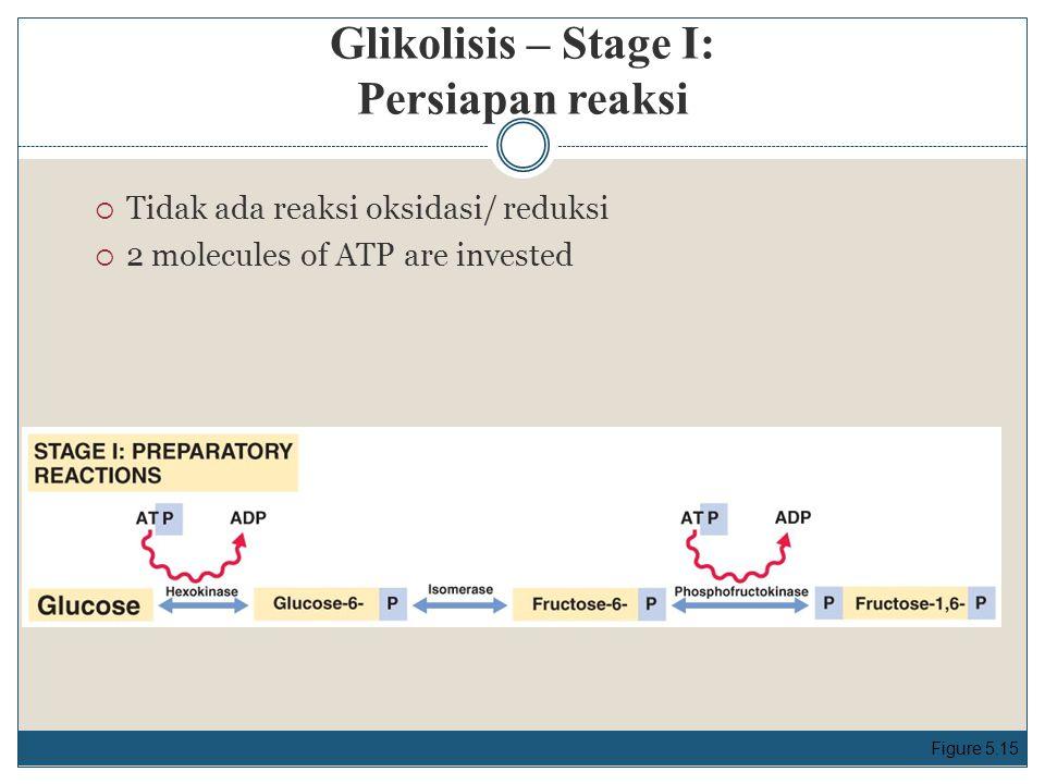 Glikolisis – Stage I: Persiapan reaksi  Tidak ada reaksi oksidasi/ reduksi  2 molecules of ATP are invested Figure 5.15