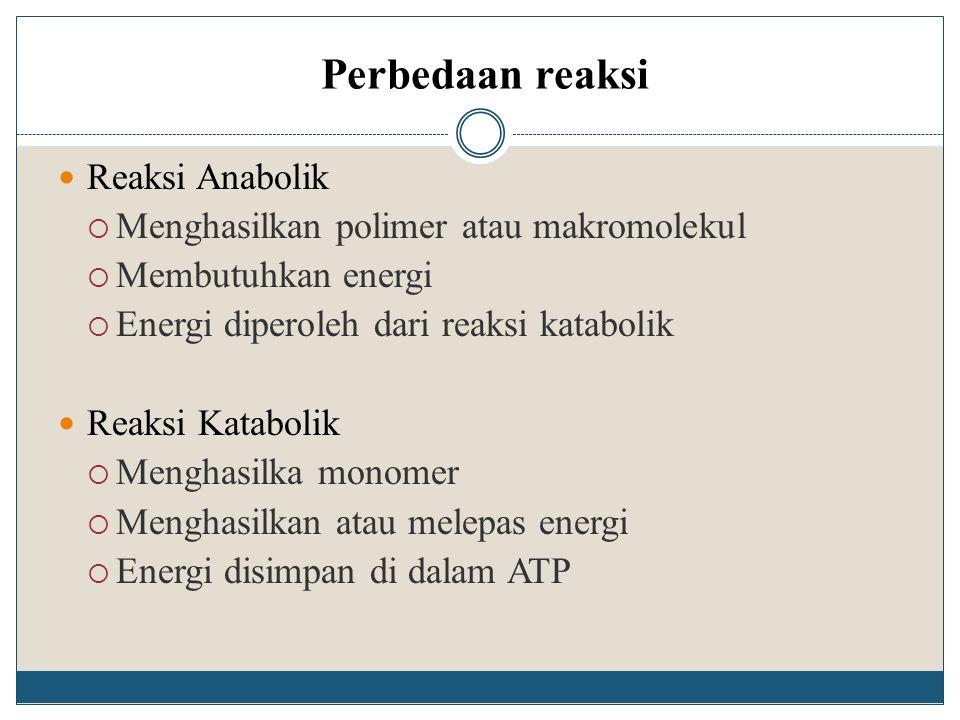 Perbedaan reaksi Reaksi Anabolik  Menghasilkan polimer atau makromolekul  Membutuhkan energi  Energi diperoleh dari reaksi katabolik Reaksi Katabol