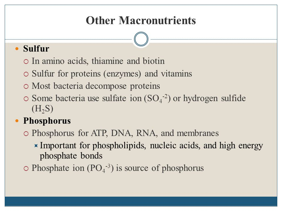 Other Macronutrients Sulfur  In amino acids, thiamine and biotin  Sulfur for proteins (enzymes) and vitamins  Most bacteria decompose proteins  So