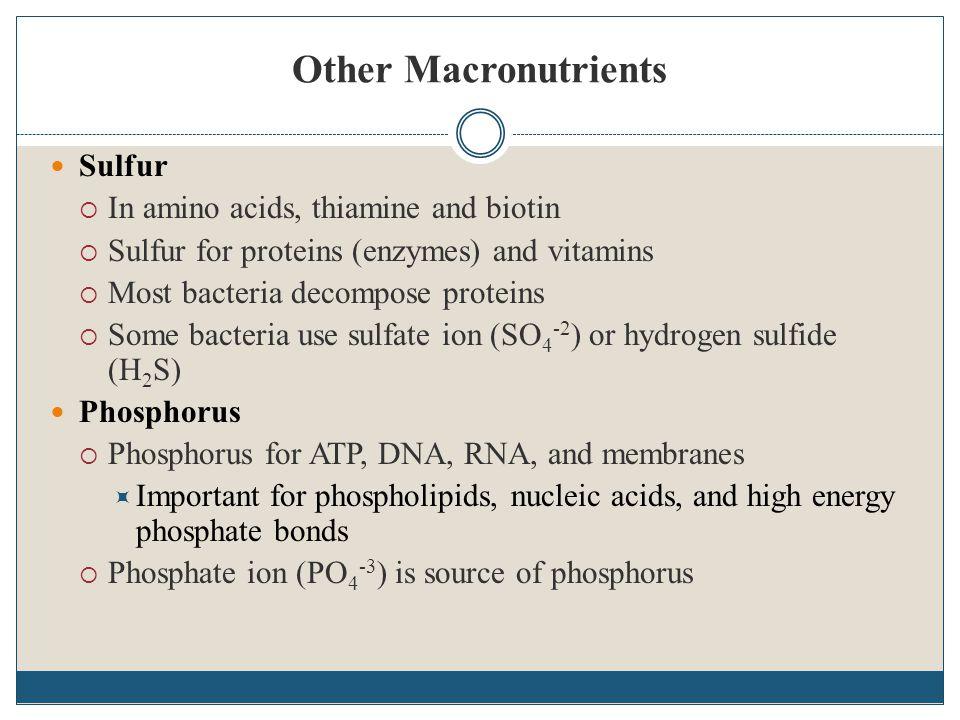 Media Diferensial Memudahkan untuk mengenal koloni dari mikroba yang berbeda  Mengadung senyawa kimia yang dapat mmbedakan secara spesifik jenis prokariotik  Pewarna yang ditambahkan pada media dapat membedakan satu orgnisme dengan organisme yang lain  Contoh : media agar darah digunakan untuk membedakan organisme hemolitik dengan organisme non hemolitik
