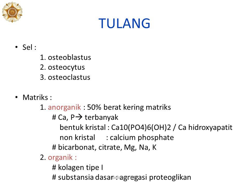 TULANG Sel : 1.osteoblastus 2. osteocytus 3. osteoclastus Matriks : anorganik 1.