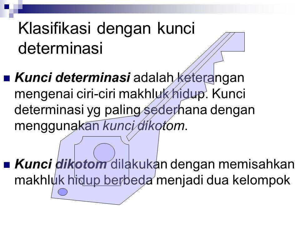 Klasifikasi dengan kunci determinasi Kunci determinasi adalah keterangan mengenai ciri-ciri makhluk hidup. Kunci determinasi yg paling sederhana denga