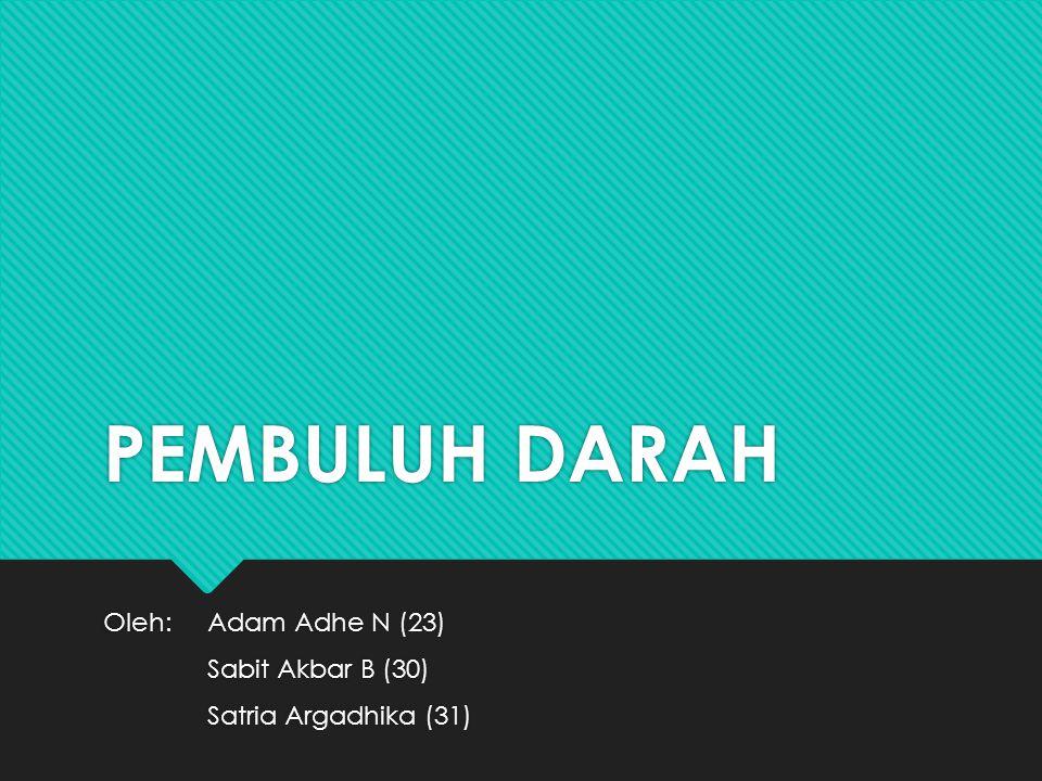 PEMBULUH DARAH Oleh:Adam Adhe N (23) Sabit Akbar B (30) Satria Argadhika (31) Oleh:Adam Adhe N (23) Sabit Akbar B (30) Satria Argadhika (31)