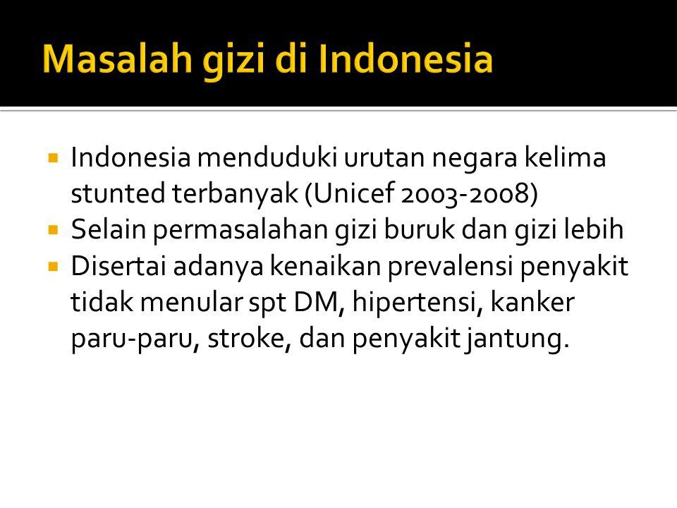  Indonesia menduduki urutan negara kelima stunted terbanyak (Unicef 2003-2008)  Selain permasalahan gizi buruk dan gizi lebih  Disertai adanya kenaikan prevalensi penyakit tidak menular spt DM, hipertensi, kanker paru-paru, stroke, dan penyakit jantung.