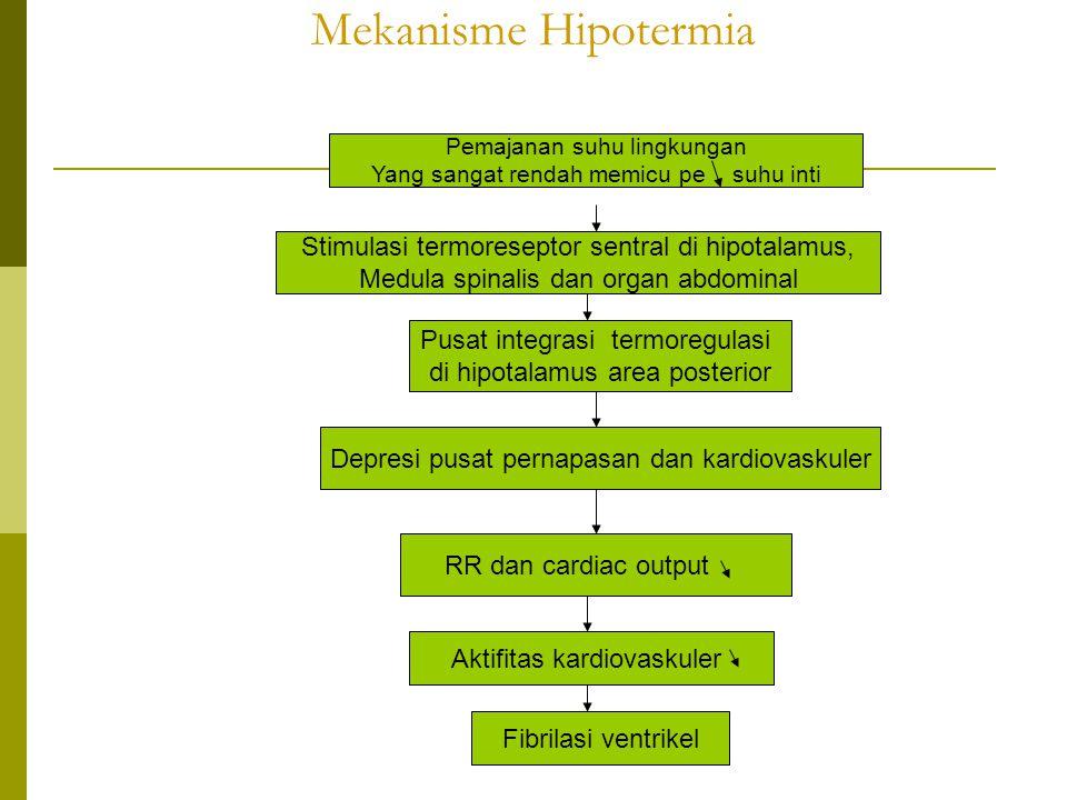 Mekanisme Hipotermia Pemajanan suhu lingkungan Yang sangat rendah memicu pe suhu inti Stimulasi termoreseptor sentral di hipotalamus, Medula spinalis
