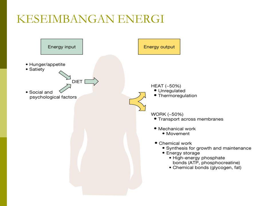 KESEIMBANGAN ENERGI