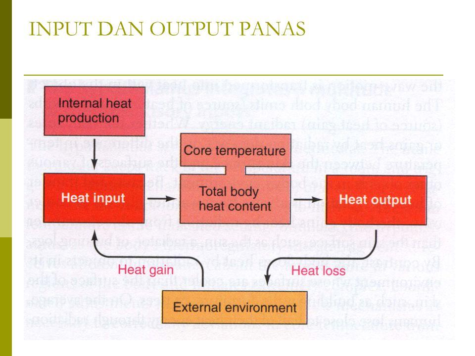 INPUT DAN OUTPUT PANAS