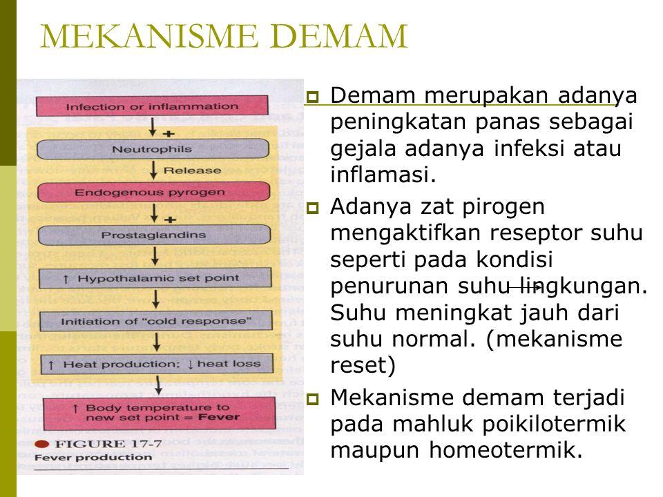 MEKANISME DEMAM  Demam merupakan adanya peningkatan panas sebagai gejala adanya infeksi atau inflamasi.  Adanya zat pirogen mengaktifkan reseptor su
