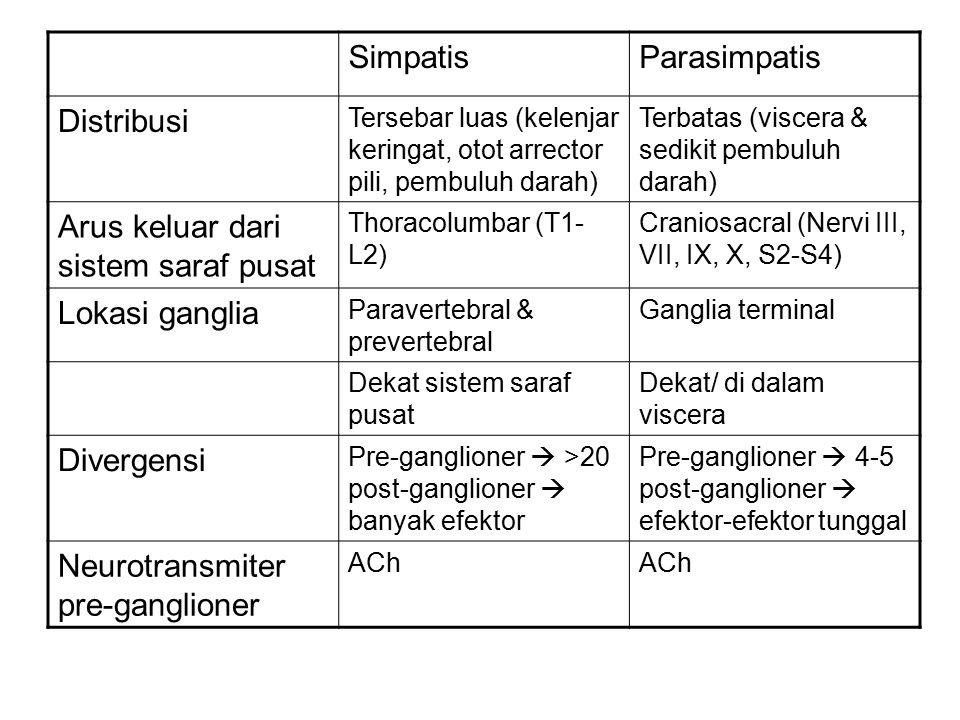 SimpatisParasimpatis Distribusi Tersebar luas (kelenjar keringat, otot arrector pili, pembuluh darah) Terbatas (viscera & sedikit pembuluh darah) Arus keluar dari sistem saraf pusat Thoracolumbar (T1- L2) Craniosacral (Nervi III, VII, IX, X, S2-S4) Lokasi ganglia Paravertebral & prevertebral Ganglia terminal Dekat sistem saraf pusat Dekat/ di dalam viscera Divergensi Pre-ganglioner  >20 post-ganglioner  banyak efektor Pre-ganglioner  4-5 post-ganglioner  efektor-efektor tunggal Neurotransmiter pre-ganglioner ACh