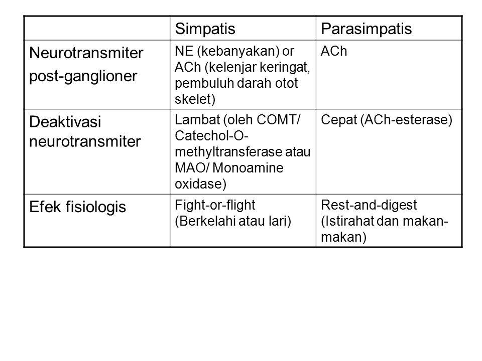 SimpatisParasimpatis Neurotransmiter post-ganglioner NE (kebanyakan) or ACh (kelenjar keringat, pembuluh darah otot skelet) ACh Deaktivasi neurotransmiter Lambat (oleh COMT/ Catechol-O- methyltransferase atau MAO/ Monoamine oxidase) Cepat (ACh-esterase) Efek fisiologis Fight-or-flight (Berkelahi atau lari) Rest-and-digest (Istirahat dan makan- makan)